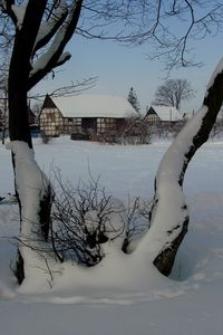 Budynki gospodarcze w Bruskowie Wielkim zimą (1)